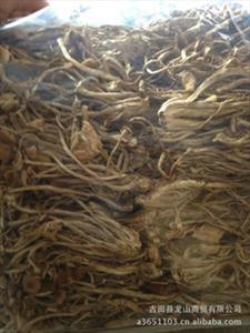 供应古田茶树菇供应干茶树菇10斤装350元