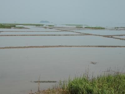 水产品养殖