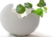 网上如何选购陶瓷花瓶