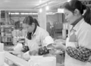 德化陶瓷企业创新驱动接外单