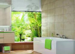 传统卫浴正受到电商的洗礼 细分市场显重要