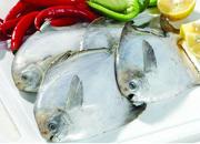 宁德霞浦召开2014年度伏季休渔工作会议