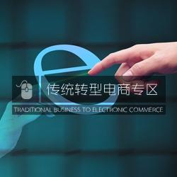 传统转型电商专区