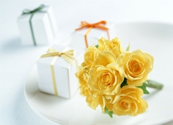 90后女孩淘宝创业  卖鲜花的心酸路程