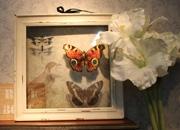  壁画 引领家居装饰新风尚