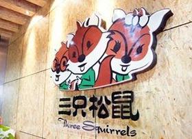 三只松鼠为什么要开实体店丨投资人、创始人深度对话