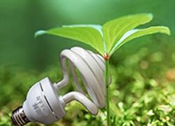 植物生长灯规模将达30个亿,推荐十款选品趋势