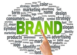亚马逊丛林法则:小卖家品牌生存必杀技