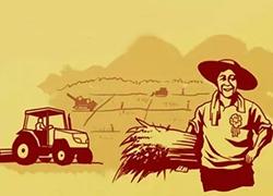 农村电商的五个误区你可知道?