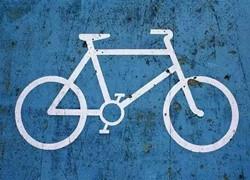 上海将出共享单车管理办法:企业和管理部门共管共治
