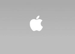 苹果股价上涨19% 巴菲特所持股票增加27亿美元