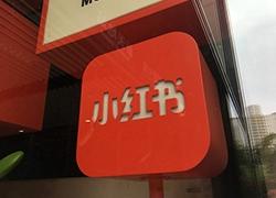 小红书占雪亮:1亿用户粉丝小红书的精细化运营