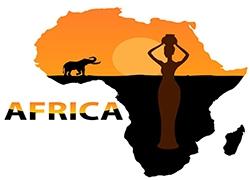 """非洲,跨境电子商务的""""新蓝海""""它蕴含着多少财富"""
