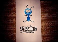 """蚂蚁金服在香港注册""""蚂蚁银行""""商标"""