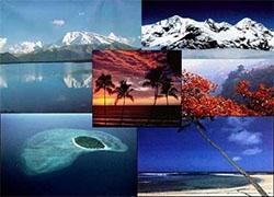 我是旅游业的,我转型成微商了