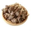 粗条鹿茸菇